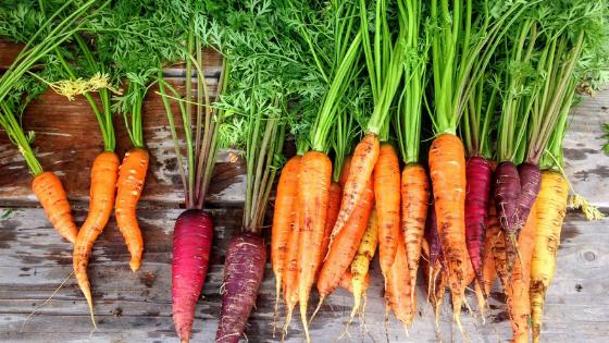 mineralny leczniczy wywar z warzyw